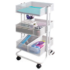 Gift Wrap Cart, White - Contemporary - Office Carts And Stands ...