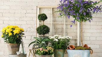 Root 98 Warehouse: Live Plants & Garden Supplies