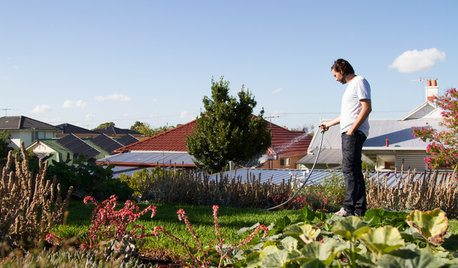 Houzz Tour: Eco Home With Rooftop Garden