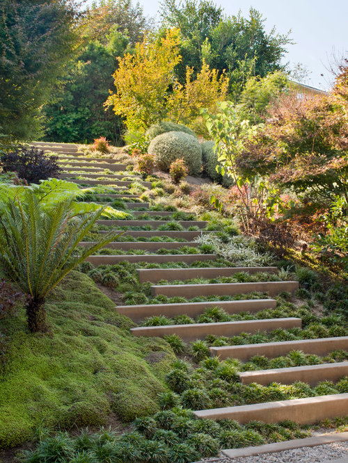 Best backyard slope design ideas remodel pictures houzz for Garden designs for steep slopes