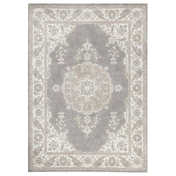 Transitional Area Rugs by Houzz