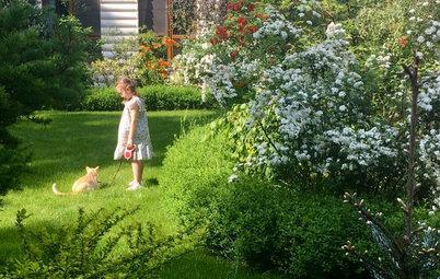 В гостях: Сад на 14 сотках, где живут круглый год