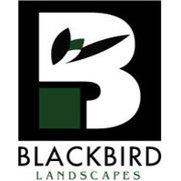 Blackbird Landscapes's photo