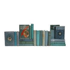 20-Piece An Ocean Of Vintage Reading, Decorative Books