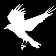 Foto de White Crow