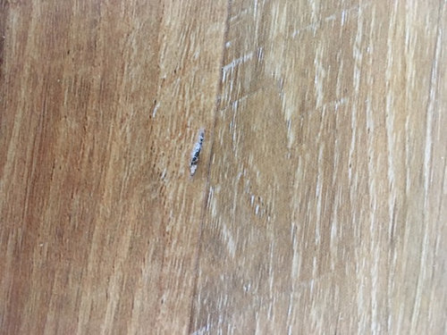 How Can I Repair Two Small Gougetears In Vinyl Plank Floor