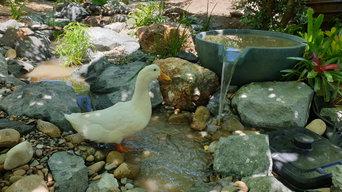Fountainscape