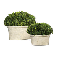 Oval Dome Boxwood Planters, Set of 2