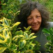 Sue Craske In the Garden's photo