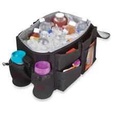 Contemporary Coolers And Ice Chests by Buy Buy Baby