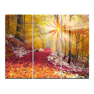 """""""Bright Yellow Sun in Alpine Forest"""" Photo Wall Art, 3 Panels, 36""""x28"""""""