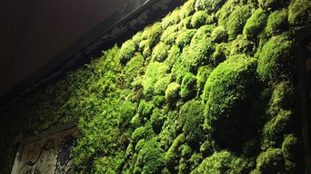 moss frame project
