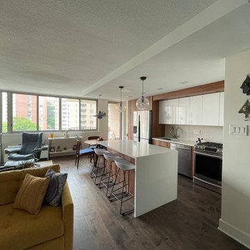 MaryJo Kitchen & Living Renovation