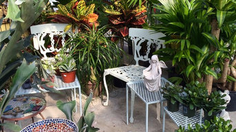 House Plants & Garden Sculpture