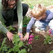 Little Saplings Children's gardening's photo