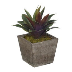 Artificial Green/Burgundy Succulent in Grey-Washed Wood Cube