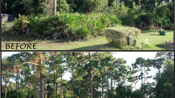 Residential Lot clearing