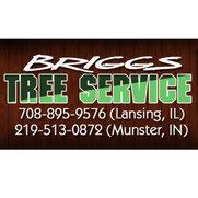 Foto de Briggs Tree Services