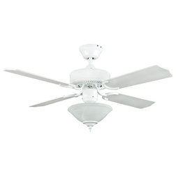 Traditional Ceiling Fans by Mylightingsource