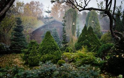 Houzz тур: Хвойный сад на Карельском перешейке