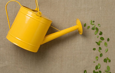 Guest Picks: Springtime Gardening Tools