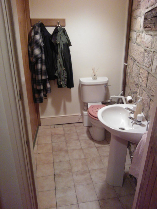 Need Help Updating My Downstairs Loo Cloakroom