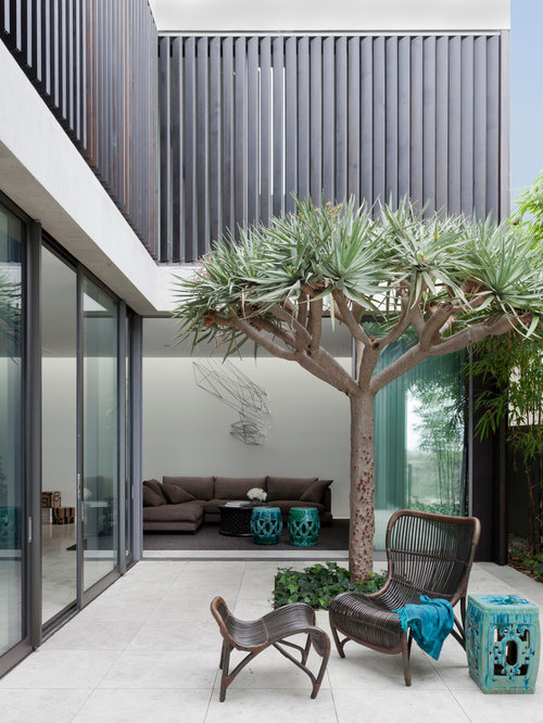 Modern patio design ideas, renovations & photos