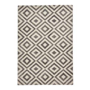 Elegant 4893 Rug, Grey/White, 160x220 cm