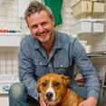 Chris Westall Murals & Trompe L'Oeil's profile photo