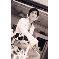 Studio Gina Villetti's profile photo