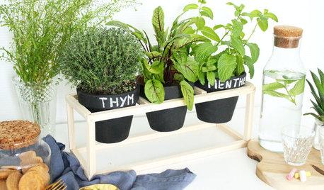 DIY : Une petite jardinière en bois pour vos plantes aromatiques
