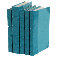 Patent Leather Books, Teal, Set of 5