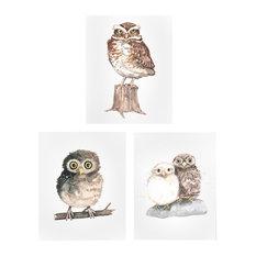"Baby Watercolor Owls Print, 3-Piece Set, Neutral, 11"""