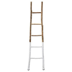 Transitional Ladders And Step Stools by First of a Kind USA Inc