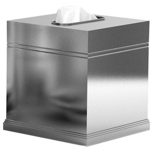 Nu Steel Mercury Glass Boutique Tissue Box Cover Contemporary Tissue Box Holders By Tatara Houzz