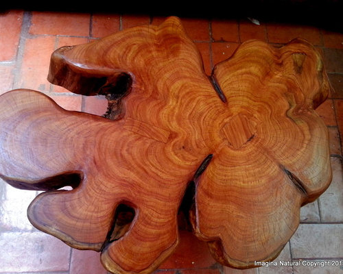 Cypress Tree Trunk Table   Products