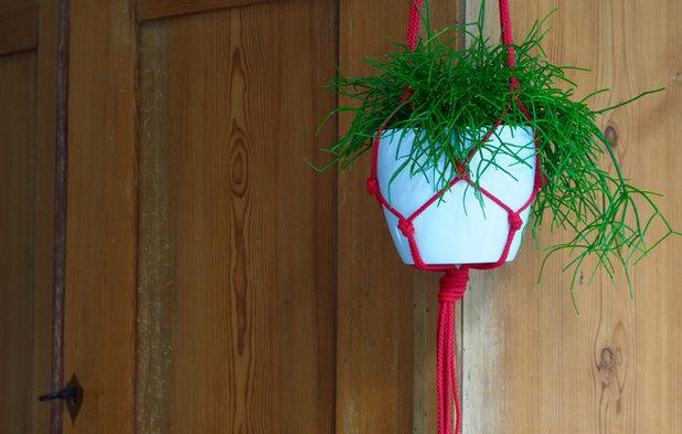 Blumenampel selber machen: DIY-Anleitung