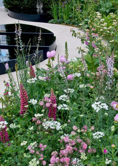 Как сделать свой сад красивым