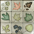 Campbell Tileworks's profile photo