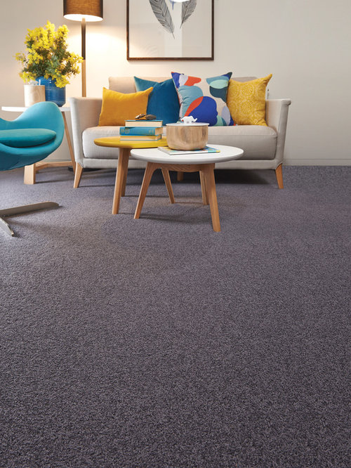 Inspiration For A Scandinavian Carpeted Living Room Remodel In Melbourne