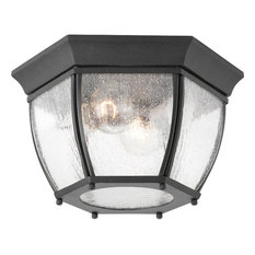 Progress Lighting P6019-31 Roman Coach 2 Light Outdoor Ceiling Light In Black