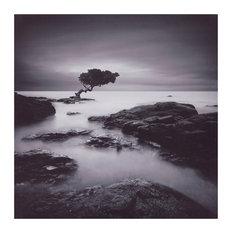 Tree Of Temptation Coastal Canvas Art