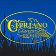 Cipriano Landscape Design & Custom Swimming Pools's profile photo