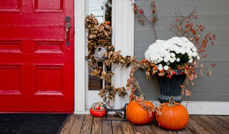 We Want to See Your Creative Fall Container Gardens!