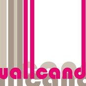Wallcandy Art and Paintさんの写真