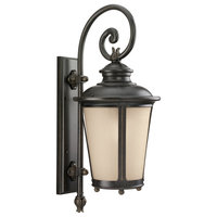 Seagull Lighting 8824291S-780 Cape May Outdoor Fixture, Burled Iron