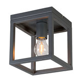 Ceiling Lamp Cage 1 Grey