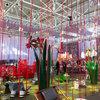 Stockholm Furniture Fair Report: Is Nordic Design Going Rogue?