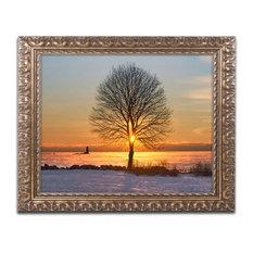 Michael Blanchette Photography 'Eye of the Tree' Ornate Framed Art, 20x16