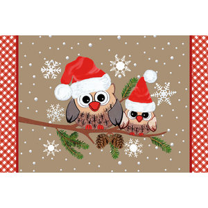 Winter Owls Gallery Door Mat, Small